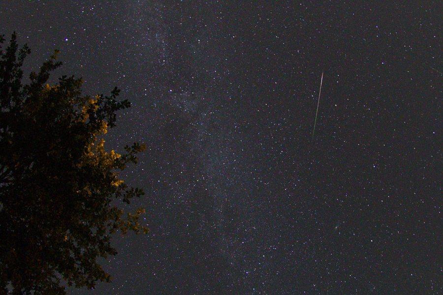 Sternenschnuppe-Vorab-Crop